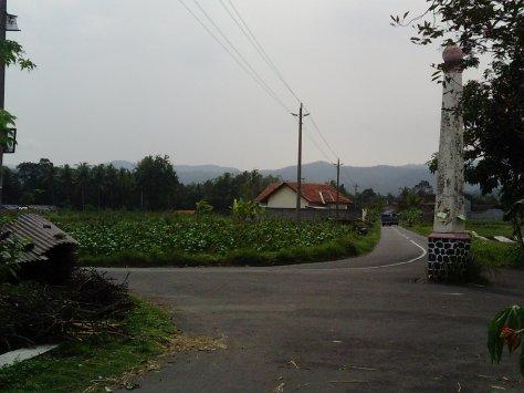 SUNP0011